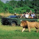 Top 10 Tips for Africa Travellers